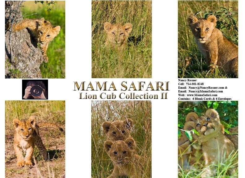 Lion-Cub-Collection-253DA0-792x5761